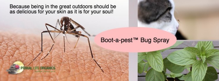 BOOT-A-PEST BANNER EMAIL