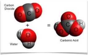 carbonic acid